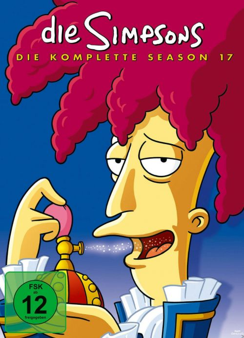 Simpsons Staffel 17 Collection Cover