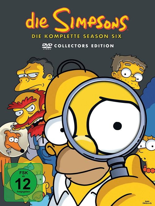 Simpsons Staffel 6 Collection Cover